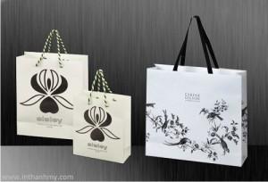 Nhận in túi giấy sang trọng đẹp quảng cáo cho shop thời trang